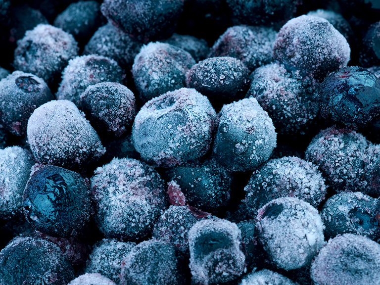 closeup for frozen blueberries