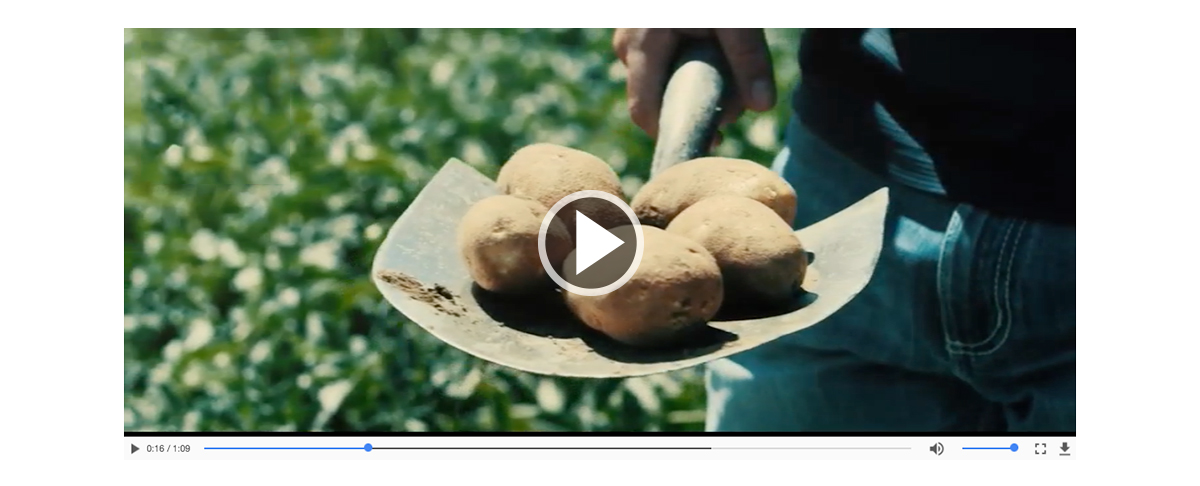 See where your fries got their start & meet the farmers who grow them.