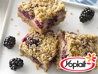 Yogurt and blueberry oatmeal crumble bar dessert