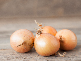 Fresh onions are in season now!